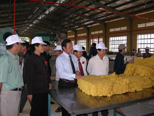 Lãnh đạo tập đoàn, tỉnh thăm quan nhà máy chế biến mủ