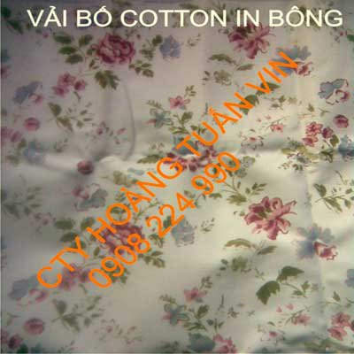 Vải bố cotton