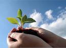 Thực hiện báo cáo giám sát môi trường định kỳ.