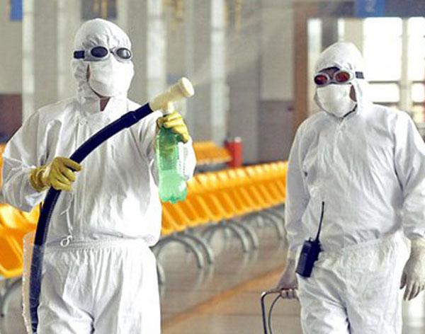 Dịch vụ diệt mối, diệt côn trùng gây hại