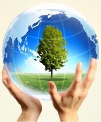 Bản cam kết bảo vệ môi trường