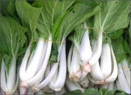 Rau cải trắng