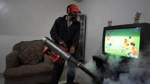 Dịch vụ diệt ruồi, muỗi