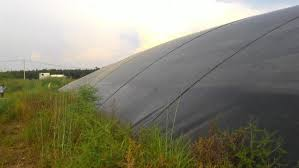 Hồ Biogas