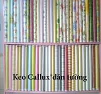 Keo Callux dán tường