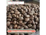 Champa Espresso 1