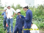 Dịch vụ Nam Việt