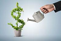 Tư vấn đầu tư và kinh doanh