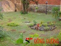 Hệ thống tưới vườn biệt thự Đak Nong