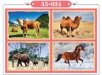 xếp hình 12 mảnh động vật