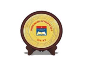 Kỷ niệm chương bằng gỗ đồng