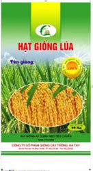 Bao lúa giống 40KG Hà Tây