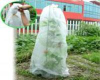 Túi bọc nông sản