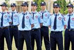 Cung cấp vệ sĩ