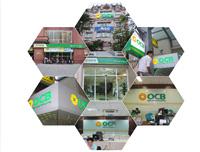 Thiết kê dàn dựng thi công nội ngoại thất phòng giao dịch ngân hàng OBC