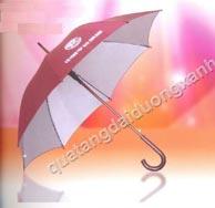 ô đi mưa