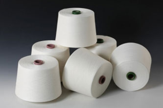 Sợi Tetron Cotton
