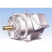 Oil Well Pump Induction Motor