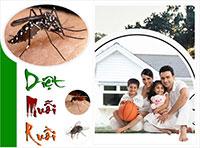 Diệt mối diệt côn trùng