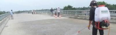 Thi công chống nứt mặt cầu TAM SIL 7