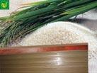 Thanh lau gạo