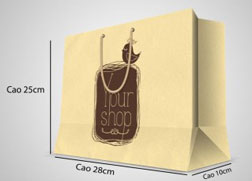 Túi giấy tái chế