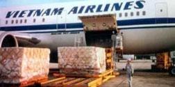 Vận chuyển hàng hóa lên máy bay