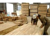Kiểm soát côn trùng nhà máy gỗ