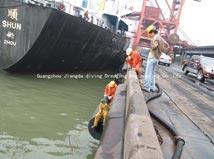 Dịch vụ lặn