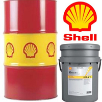 Shell - Morlina