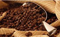 Cà phê nhân