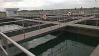 Hệ thống xử lý nước thải KCN