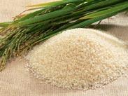 Gạo bắc hương