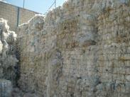 phế liệu nhựa LDPE