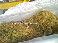 Bắp ủ chua