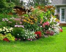 Thi công sân vườn