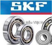 Bạc Đạn SKF