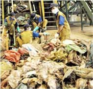 Xử lý thu gom chất thải rác thải