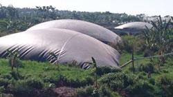 bat lot ho biogas