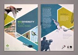 In brochure