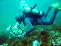 Lặn khảo sát công trình ngầm
