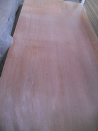 PLYWOOD WITH PHENOL GLUE