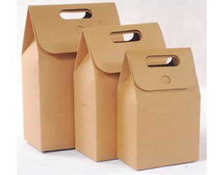 Túi giấy Carton
