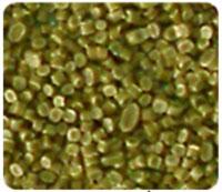 Hạt HDPE vàng