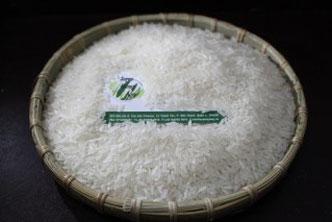 Gạo sóc trăng
