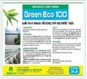 Green Eco 100