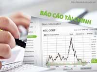 Báo cáo tài chính năm