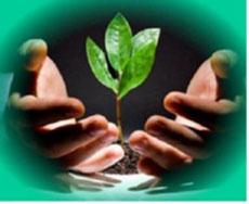 Đề án bảo vệ môi trường chi tiết