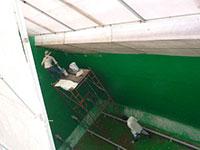 Bọc phủ chống thấm nền tường mái các CTXD