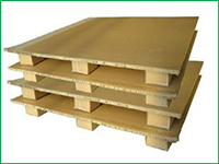 Pallet giấy tổ ong